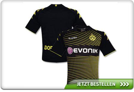 Dortmund-Auswaerts-2010